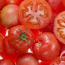 西红柿营养价值